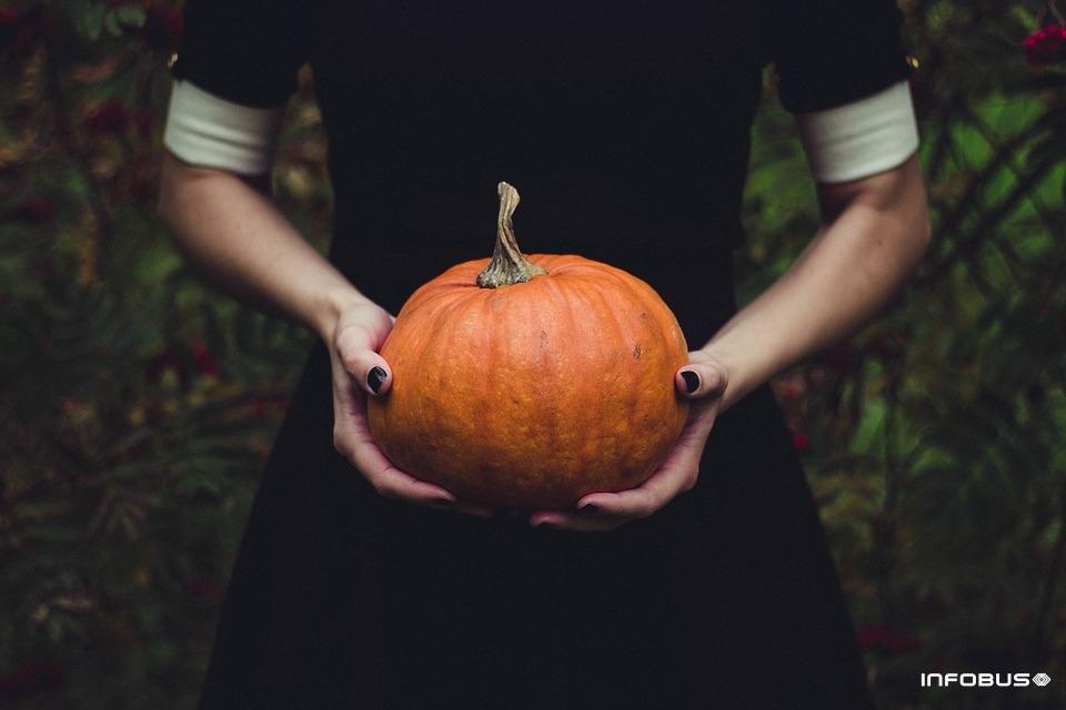 5bc9ab504d94d_pumpkin-1838545_960_720